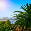 Tropical palm coast near resort town. - Stock Photo
