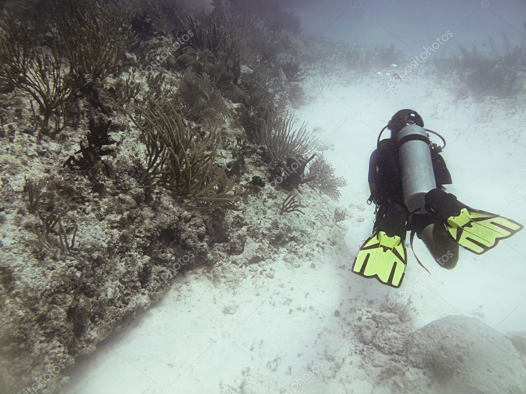 Scuba diver swimming around a coral reef — Stock Photo #9838175