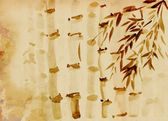 Bamboo grove — Stock Photo