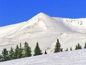 Paisagem de montanha de inverno — Foto Stock