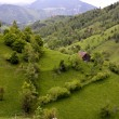 Rural scene from Pestera village, Romania — Foto Stock