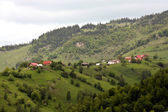 Den scénu z vesnice zvané pestera, rumunsko — Stock fotografie