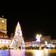 Christmas tree full of light in Piata Sfatului from Brasov - Zdjęcie stockowe