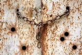 Beş kurşun delikleri metal sorunsuz doku içinde çini — Stok fotoğraf