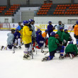 Stock Photo: The hockey team listening the coach indications