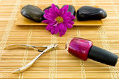 Spa Manicure Scene — Stock Photo