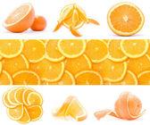 Collection of orange — Stock Photo