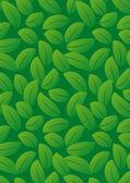 Spring leaf pattern — Stock Vector