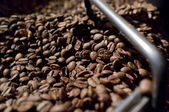 Roasted coffee beans — Foto de Stock