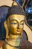 Porträtt av buddha staty — Stockfoto