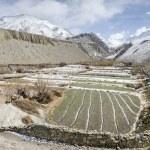Himalaya-panorama — Stockfoto