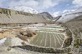 Himalaya panorama — Stockfoto