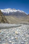 Empty river in Himalaya — Stock Photo