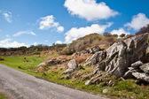 Campo e strada di islay — Foto Stock