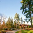 Washington Park Arboretum — Stock Photo