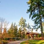 Washington Park Arboretum — Stock Photo