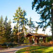Washington Park Arboretum — Stock Photo #8060200