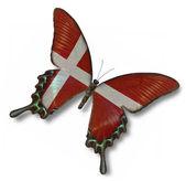 Denmark flag on butterfly — 图库照片