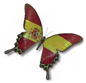 Spanish flag on butterfly — Stock Photo