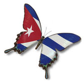 Cuba flag on butterfly — Stock Photo