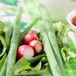 Fresh garden radish, sorrel, spinach and green onions on a table — Stock Photo