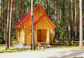 New house made of logs in the pine forest — Stock Photo