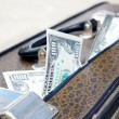 Old suitcase full of money — Stock Photo #8186694