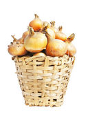 The big crop of onions lies in a basket — Stock Photo