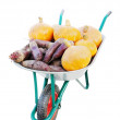 The new harvest. Many different vegetables lie in the garden cart. Isolated - Foto Stock