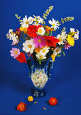 The luxuriant bouquet of various flowers on a dark blue background — Stock Photo