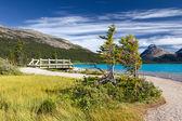 Beautiful Canadian Landscape, Banff National Park, Alberta, Canada — Stock Photo