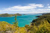 Beautiful New Zealand Landscape. Abel Tasman National Park, Sout — Stock Photo