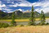 Canadian Landscape. Rocky Mountains, Fir Trees and Cloudy Sky. — Stock Photo