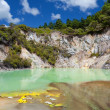 Wai-O-Tapu Geothermal Wonderland, New Zealand - Stock Photo