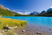 Lake Waterfowl, Banff National Park, Canada — Stock Photo