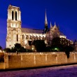 Night view of Notre Notre Dame de Paris - Stock Photo