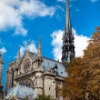 Notre Dame de Paris — Stock Photo #9020321