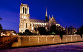 Night view of Notre Notre Dame de Paris — Stock Photo