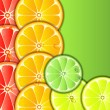 Citrus background — Stock Vector #10203368