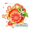 Slices grapefruit with flowers — Stock Vector