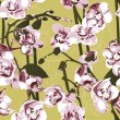 Royalty-Free Stock Vector Image: Seamless pattern with orchids