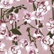 Seamless pattern with orchids — Stock Vector