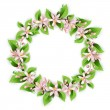 Flower wreath with beautiful pink flowers — Stock Vector