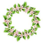 Guirnalda de flores con hermosas flores rosas — Vector de stock