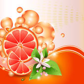 Abstract background with juicy slices of grapefruit — Stock Vector