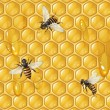 Background with bees — Imagens vectoriais em stock