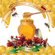 Jar of honey with wooden dipper, bees, ribbons and roses — Stock Vector #9680589