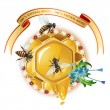 Three bees and honeycombs — Stock Vector
