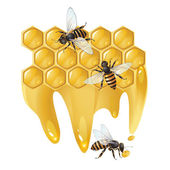 Three bees and honeycombs — Vector de stock
