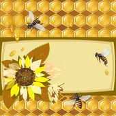 Background with bees and honeycomb — Vector de stock